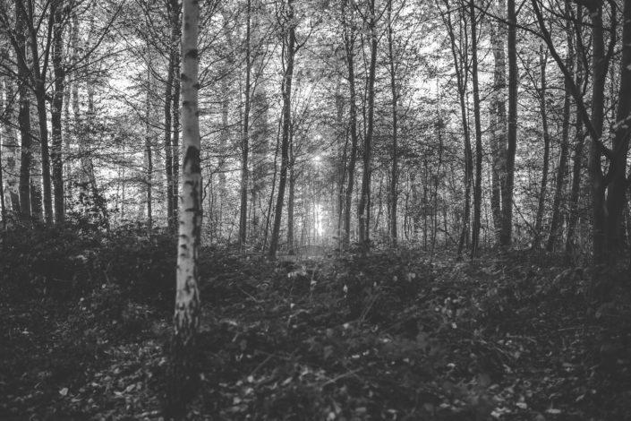 kyle uchitel improving your photography
